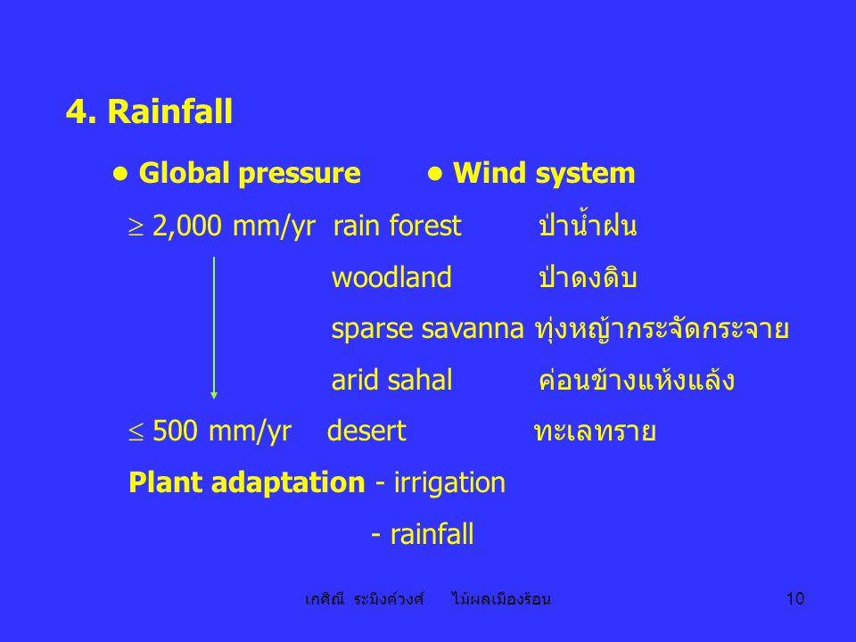 เกศิณี ระมิงค์วงศ์ ไม้ผลเมืองร้อน 10 4. Rainfall ● Global pressure ● Wind system  2,000 mm/yr rain forest ป่าน้ำฝน woodland ป่าดงดิบ sparse savanna ท