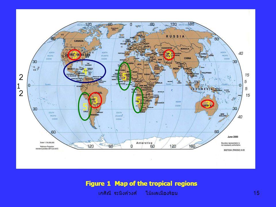 เกศิณี ระมิงค์วงศ์ ไม้ผลเมืองร้อน 15 4 3 3 3 5 5 5 3 Figure 1 Map of the tropical regions 1 2 2 4 3 3 3 5 5 5 3 1 2 2