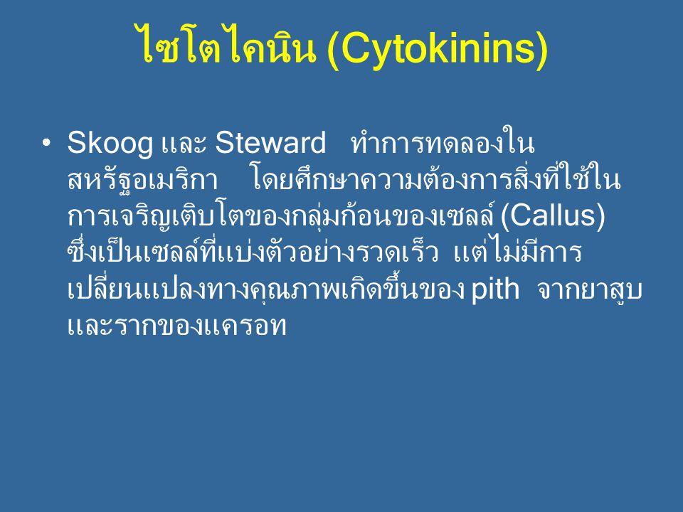 ไซโตไคนิน (Cytokinins) Skoog และ Steward ทำการทดลองใน สหรัฐอเมริกา โดยศึกษาความต้องการสิ่งที่ใช้ใน การเจริญเติบโตของกลุ่มก้อนของเซลล์ (Callus) ซึ่งเป็