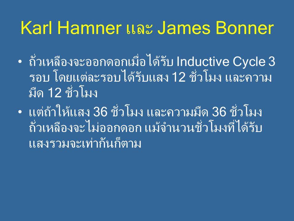 Karl Hamner และ James Bonner ถั่วเหลืองจะออกดอกเมื่อได้รับ Inductive Cycle 3 รอบ โดยแต่ละรอบได้รับแสง 12 ชั่วโมง และความ มืด 12 ชั่วโมง แต่ถ้าให้แสง 3