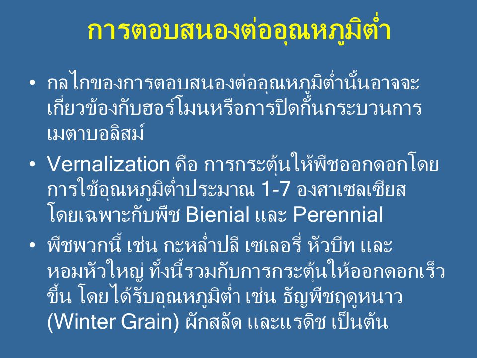การตอบสนองต่ออุณหภูมิต่ำ กลไกของการตอบสนองต่ออุณหภูมิต่ำนั้นอาจจะ เกี่ยวข้องกับฮอร์โมนหรือการปิดกั้นกระบวนการ เมตาบอลิสม์ Vernalization คือ การกระตุ้น