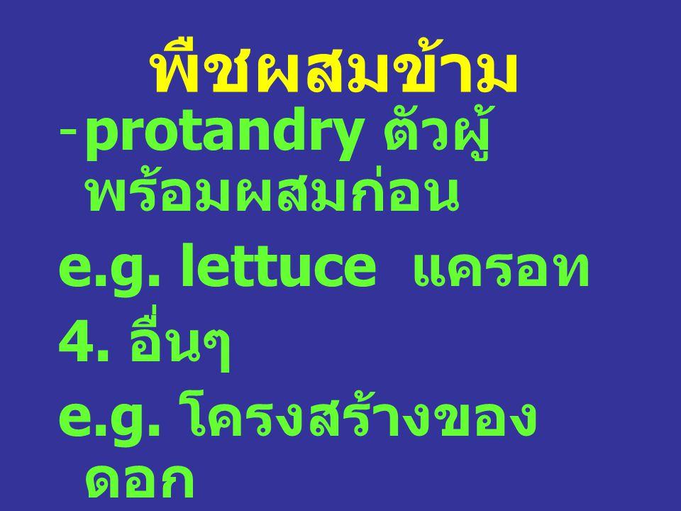 พืชผสมข้าม -protandry ตัวผู้ พร้อมผสมก่อน e.g.lettuce แครอท 4.