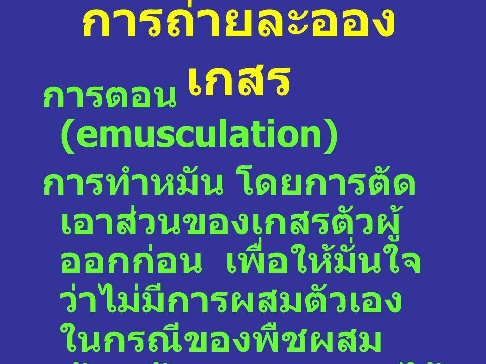 การถ่ายละออง เกสร การตอน (emusculation) การทำหมัน โดยการตัด เอาส่วนของเกสรตัวผู้ ออกก่อน เพื่อให้มั่นใจ ว่าไม่มีการผสมตัวเอง ในกรณีของพืชผสม ข้าม ต้องเอาถุงครอบไว้ ก่อน ไม่ให้มีการถ่าย ละอองเกสร