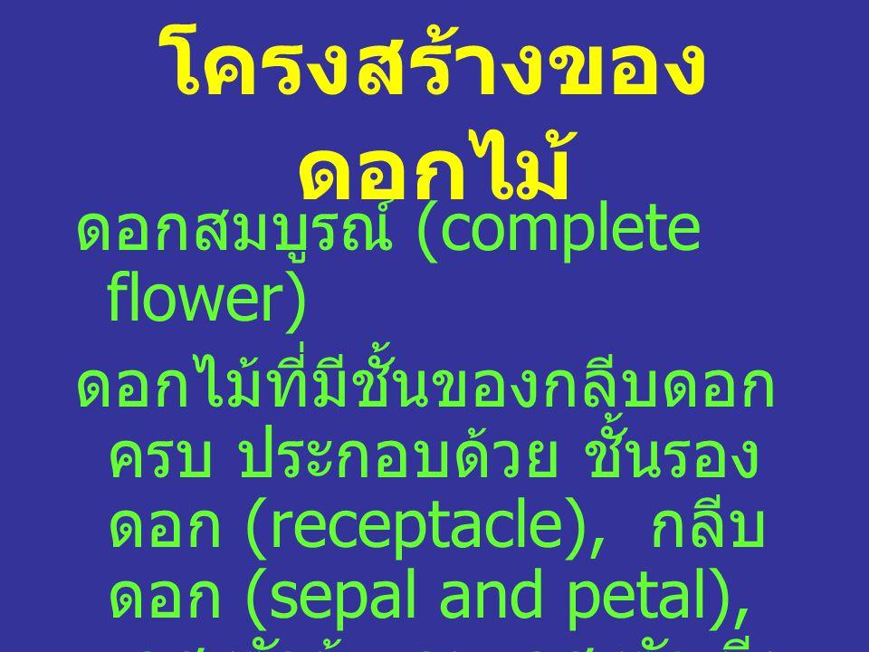 โครงสร้างของ ดอกไม้ ดอกสมบูรณ์ (complete flower) ดอกไม้ที่มีชั้นของกลีบดอก ครบ ประกอบด้วย ชั้นรอง ดอก (receptacle), กลีบ ดอก (sepal and petal), เกสรตัวผู้ และ เกสรตัวเมีย (stamen and pistil)