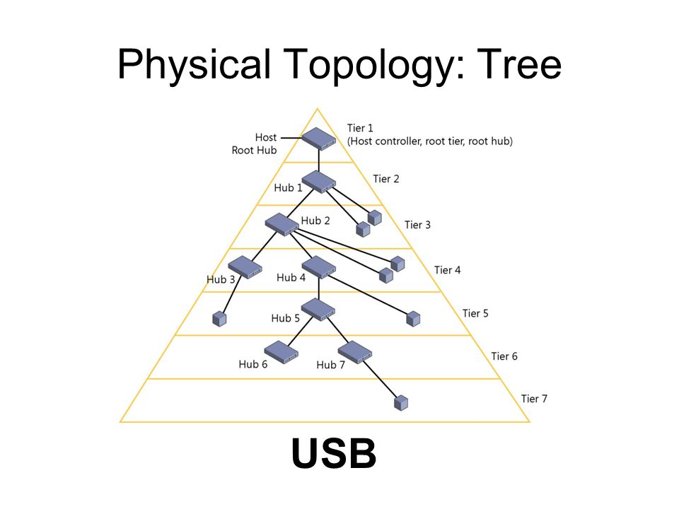 Physical Topology: Tree USB