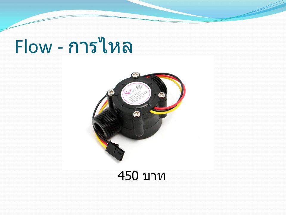 Flow - การไหล 450 บาท