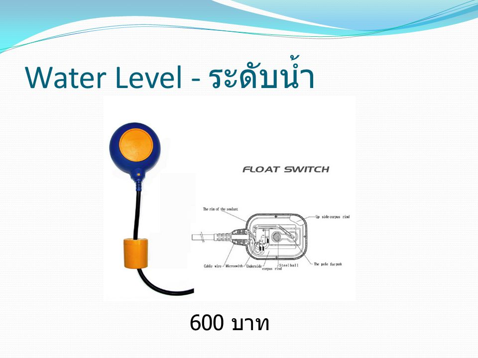 Water Level - ระดับน้ำ 600 บาท