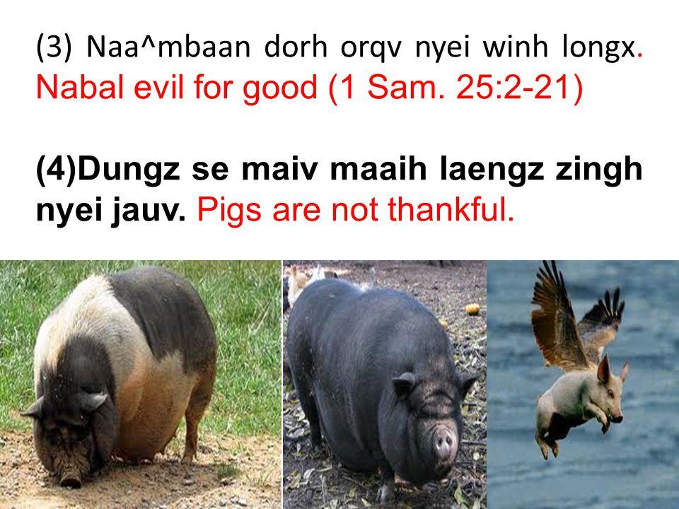 (c) Yiem maanc sic oix zuqc laengz zingh Tin-Hungh.
