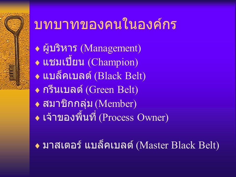 บทบาทของคนในองค์กร  ผู้บริหาร (Management)  แชมเปี้ยน (Champion)  แบล็คเบลต์ (Black Belt)  กรีนเบลต์ (Green Belt)  สมาชิกกลุ่ม (Member)  เจ้าของ