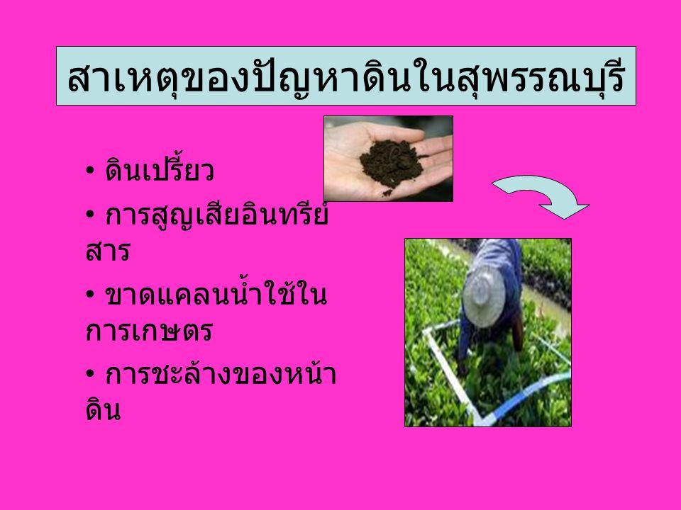 สาเหตุของปัญหาดินในสุพรรณบุรี ดินเปรี้ยว การสูญเสียอินทรีย์ สาร ขาดแคลนน้ำใช้ใน การเกษตร การชะล้างของหน้า ดิน