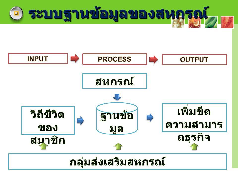 LOGO ระบบฐานข้อมูลของสหกรณ์ระบบฐานข้อมูลของสหกรณ์