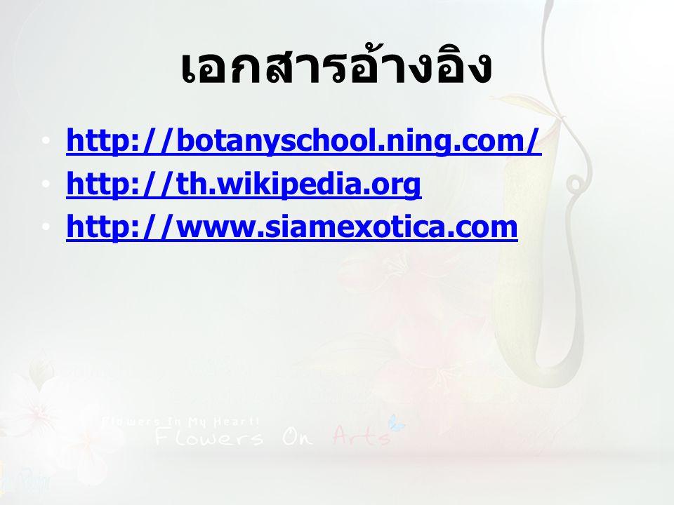 เอกสารอ้างอิง http://botanyschool.ning.com/ http://th.wikipedia.org http://www.siamexotica.com
