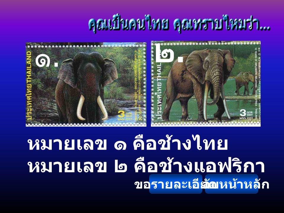 หมายเลข ๑ คือช้างไทย หมายเลข ๒ คือช้างแอฟริกา ๑.๑. ๒.๒. กลับหน้าหลักขอรายละเอียด