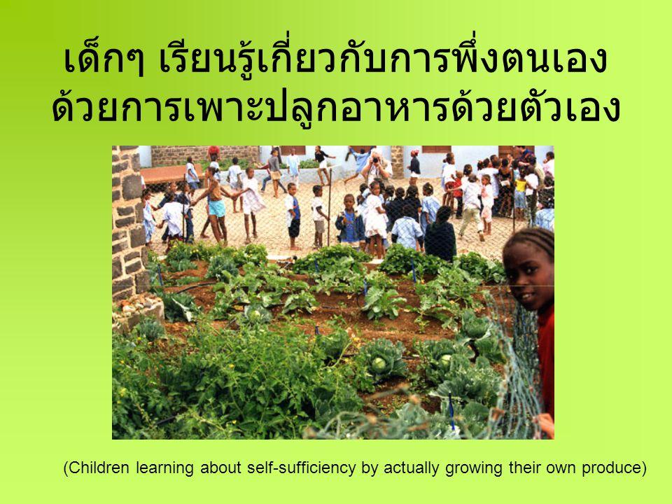 เด็กๆ ส่งผ่านความรู้เกี่ยวกับเกษตร ยั่งยืนแก่กันและกัน (Children passing on their knowledge of sustainable practices to other children)