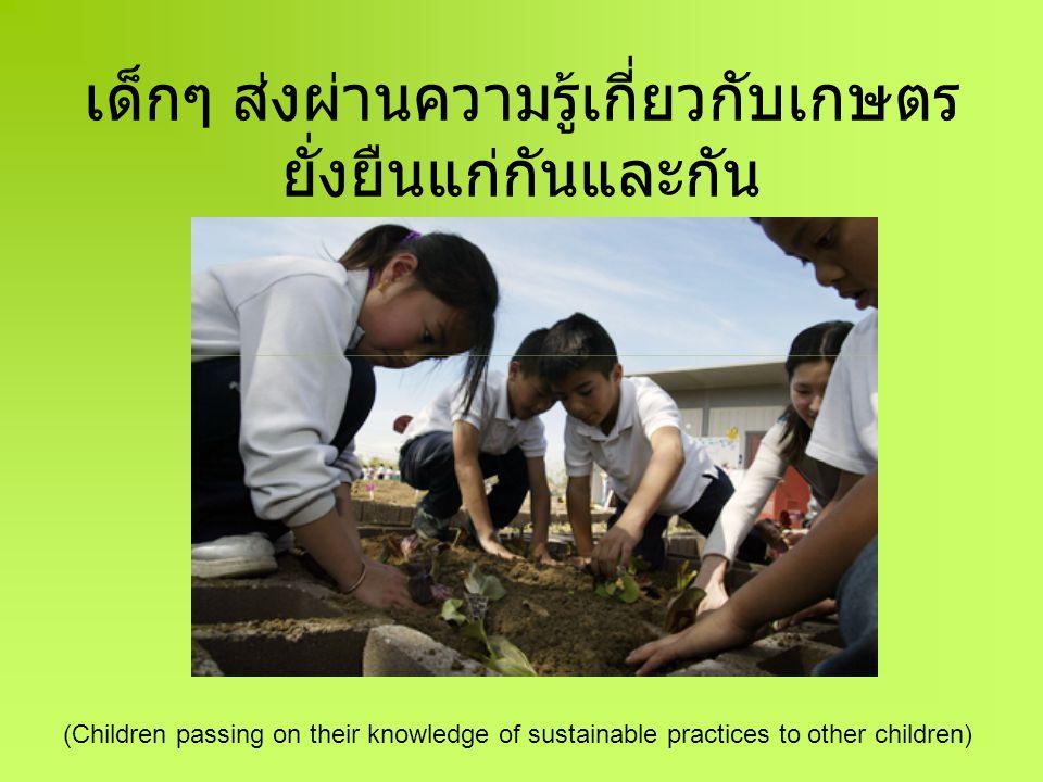 ทั้งชุมชนร่วมกันมีส่วนในการให้ การศึกษากับลูกหลานของตน (Whole community being involved in the children's education)