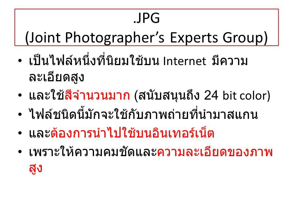 .JPG (Joint Photographer's Experts Group) เป็นไฟล์หนึ่งที่นิยมใช้บน Internet มีความ ละเอียดสูง และใช้สีจำนวนมาก ( สนับสนุนถึง 24 bit color) ไฟล์ชนิดนี