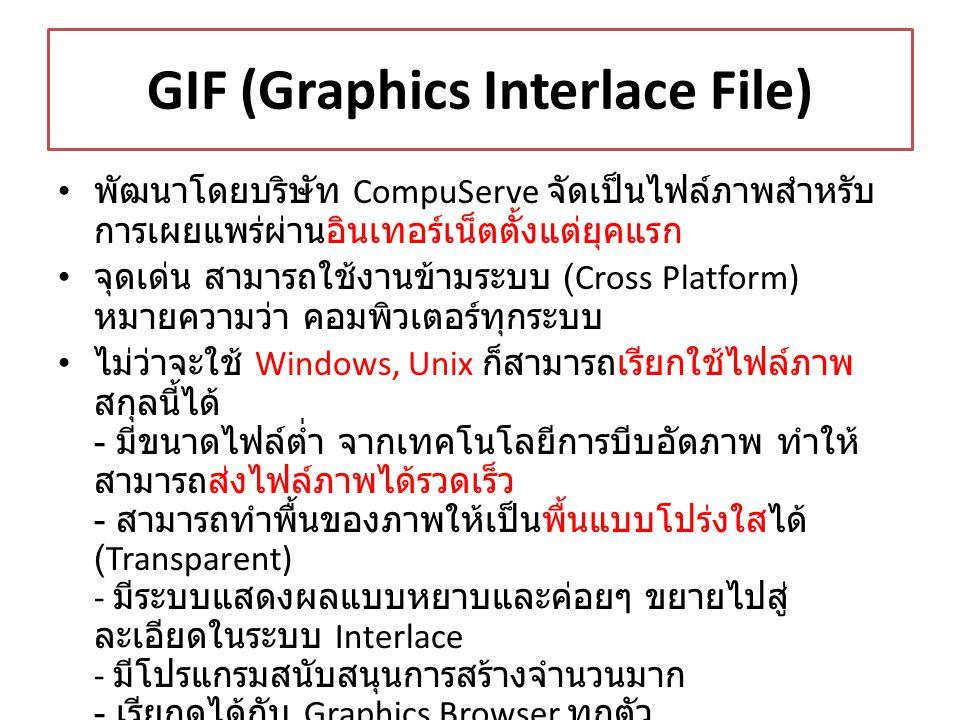 GIF (Graphics Interlace File) พัฒนาโดยบริษัท CompuServe จัดเป็นไฟล์ภาพสำหรับ การเผยแพร่ผ่านอินเทอร์เน็ตตั้งแต่ยุคแรก จุดเด่น สามารถใช้งานข้ามระบบ (Cro