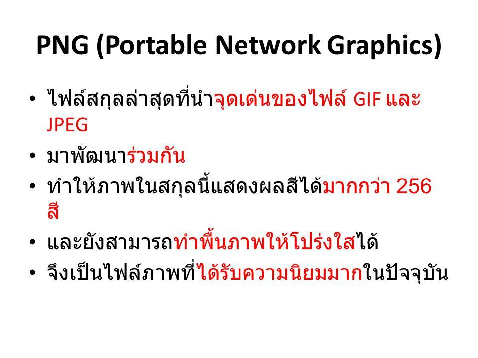 PNG (Portable Network Graphics) ไฟล์สกุลล่าสุดที่นำจุดเด่นของไฟล์ GIF และ JPEG มาพัฒนาร่วมกัน ทำให้ภาพในสกุลนี้แสดงผลสีได้มากกว่า 256 สี และยังสามารถท
