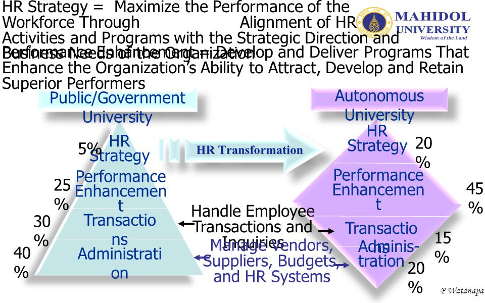 P Watanapa HR Strategy Performance Enhancemen t Transactio ns Administrati on 40 % 30 % 25 % 5% Public/Government University HR Strategy = Maximize th