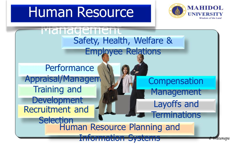 P Watanapa Human Resource Management Human Resource Planning and Information Systems Recruitment and Selection Training and Development Safety, Health, Welfare & Employee Relations Compensation Management Layoffs and Terminations Performance Appraisal/Management Human Resource Planning and Information Systems Recruitment and Selection Training and Development Safety, Health, Welfare & Employee Relations Compensation Management Layoffs and Terminations Performance Appraisal/Management Human Resource Planning and Information Systems Recruitment and Selection Training and Development Safety, Health, Welfare & Employee Relations Compensation Management Layoffs and Terminations Performance Appraisal/Management การแข่งขัน