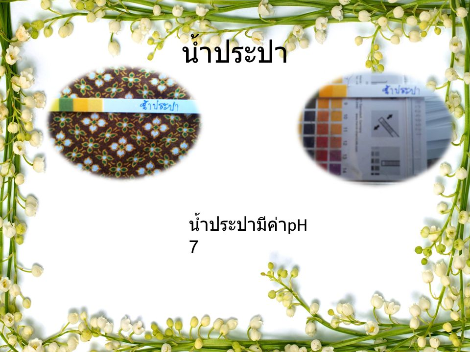 น้ำประปา น้ำประปามีค่า pH 7