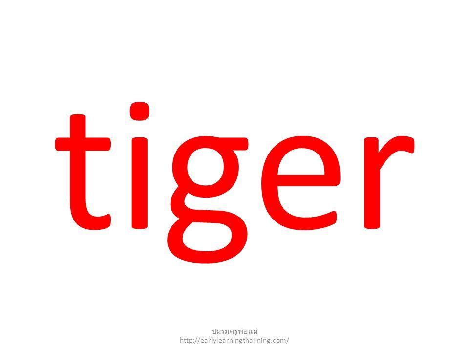 tiger ชมรมครูพ่อแม่ http://earlylearningthai.ning.com/