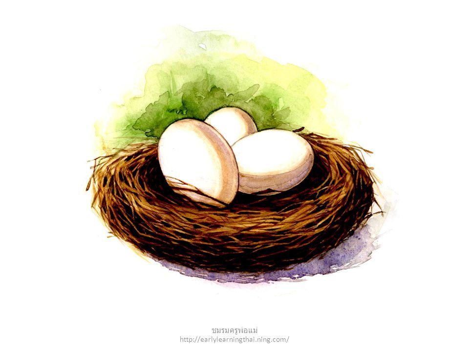 nest ชมรมครูพ่อแม่ http://earlylearningthai.ning.com/