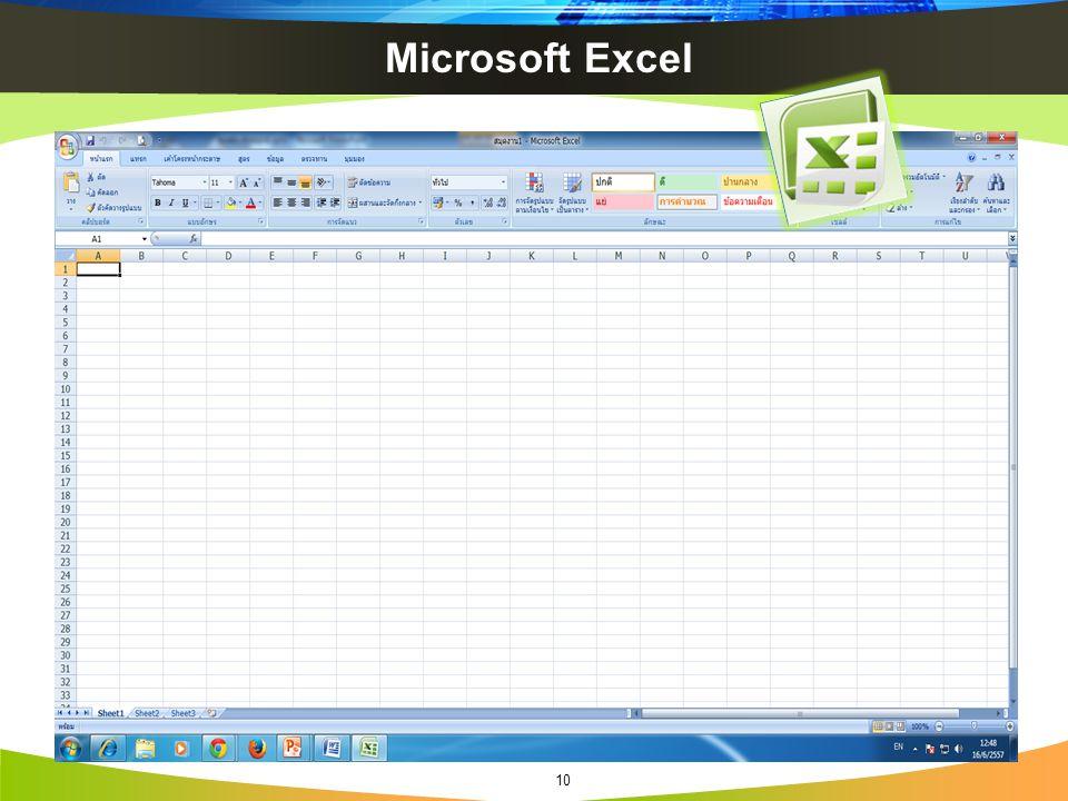 Microsoft Excel 10