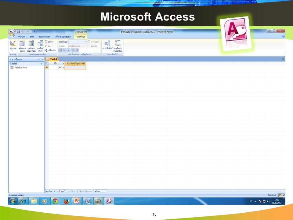 Microsoft Access 13