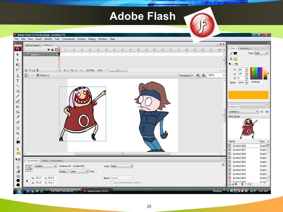 Adobe Flash 28