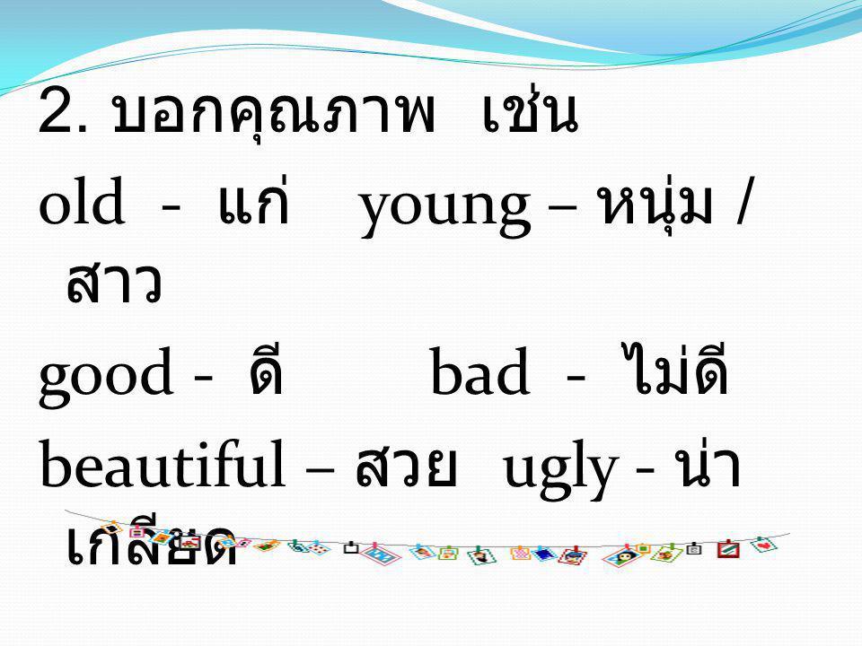 2. บอกคุณภาพ เช่น old - แก่ young – หนุ่ม / สาว good - ดี bad - ไม่ดี beautiful – สวย ugly - น่า เกลียด