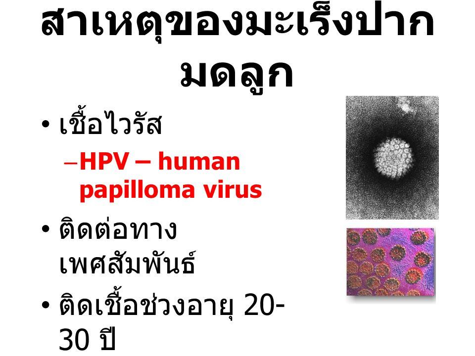 สาเหตุของมะเร็งปาก มดลูก เชื้อไวรัส –HPV – human papilloma virus ติดต่อทาง เพศสัมพันธ์ ติดเชื้อช่วงอายุ 20- 30 ปี มะเร็งเกิดหลังติดเชื้อ 10-15 ปี