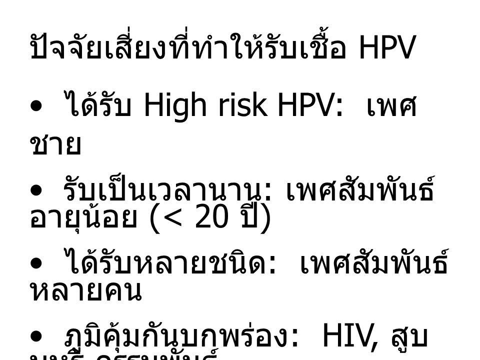 ปัจจัยเสี่ยงที่ทำให้รับเชื้อ HPV ได้รับ High risk HPV: เพศ ชาย รับเป็นเวลานาน : เพศสัมพันธ์ อายุน้อย (< 20 ปี ) ได้รับหลายชนิด : เพศสัมพันธ์ หลายคน ภูมิคุ้มกันบกพร่อง : HIV, สูบ บุหรี่ กรรมพันธุ์