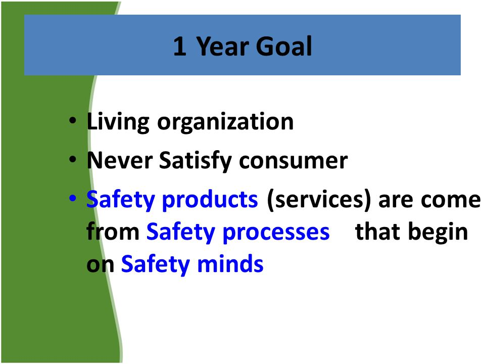 1 Year Goal Living organization Never Satisfy consumer Safety products (services) are come from Safety processes that begin on Safety minds