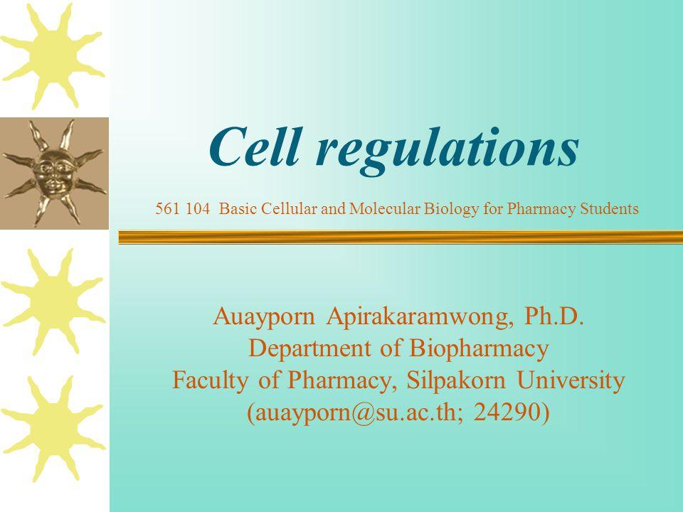 Cell regulations Auayporn Apirakaramwong, Ph.D. Department of Biopharmacy Faculty of Pharmacy, Silpakorn University (auayporn@su.ac.th; 24290) 561 104