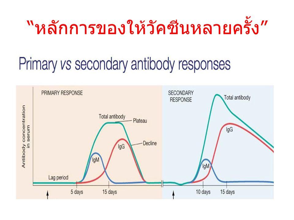 หลักการของให้วัคซีนหลายครั้ง