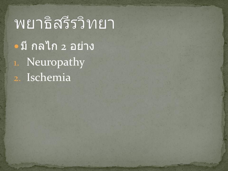น้ำตาลในเลือดสูง ปลายประสาทเสื่อม ประสาทรับ ความรู้สึก ประสาทกล้ามเนื้อประสาทอัตโนวัติ ชา, ไม่รู้สึกปวดเท้าผิดรูป เปลี่ยนจุดรับ น้ำหนัก ผิวแห้ง แตก