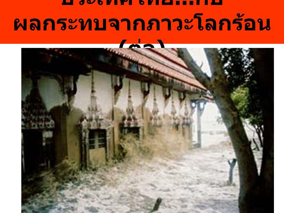 ประเทศไทย... กับ ผลกระทบจากภาวะโลกร้อน ( ต่อ )