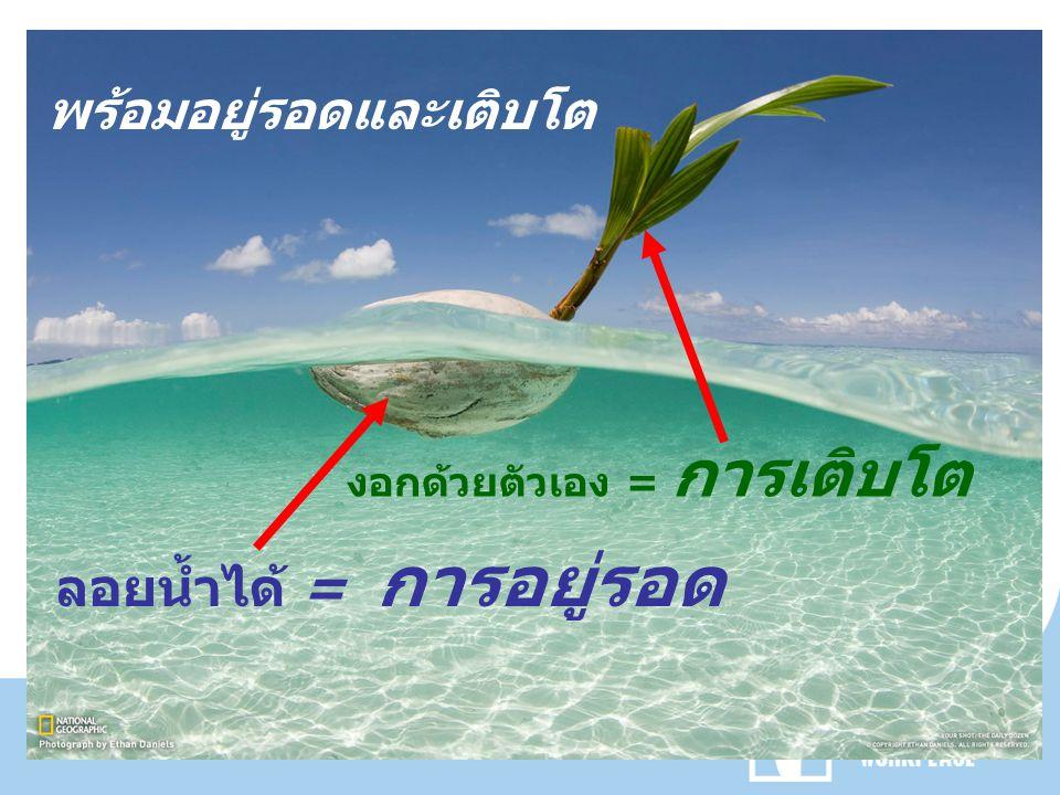 พร้อมอยู่รอดและเติบโต ลอยน้ำได้ = การอยู่รอด งอกด้วยตัวเอง = การเติบโต