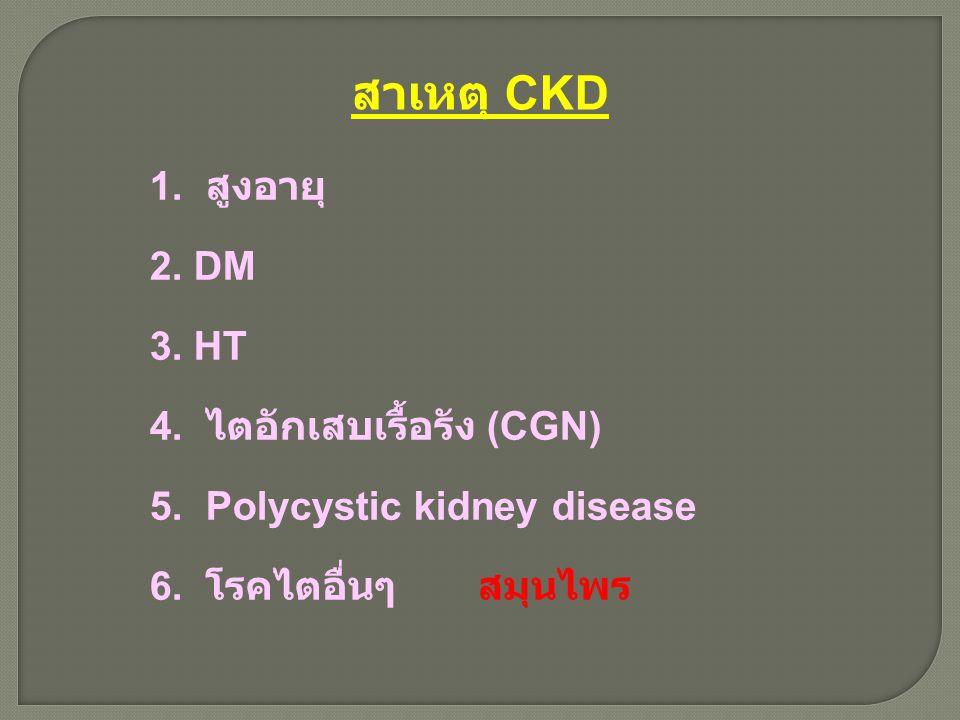 สาเหตุ CKD 1. สูงอายุ 2. DM 3. HT 4. ไตอักเสบเรื้อรัง (CGN) 5. Polycystic kidney disease 6. โรคไตอื่นๆ สมุนไพร