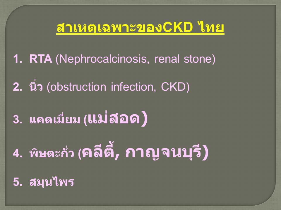 สาเหตุเฉพาะของ CKD ไทย 1. RTA (Nephrocalcinosis, renal stone) 2. นิ่ว (obstruction infection, CKD) 3. แคดเมี่ยม ( แม่สอด ) 4. พิษตะกั่ว ( คลีตี้, กาญจ