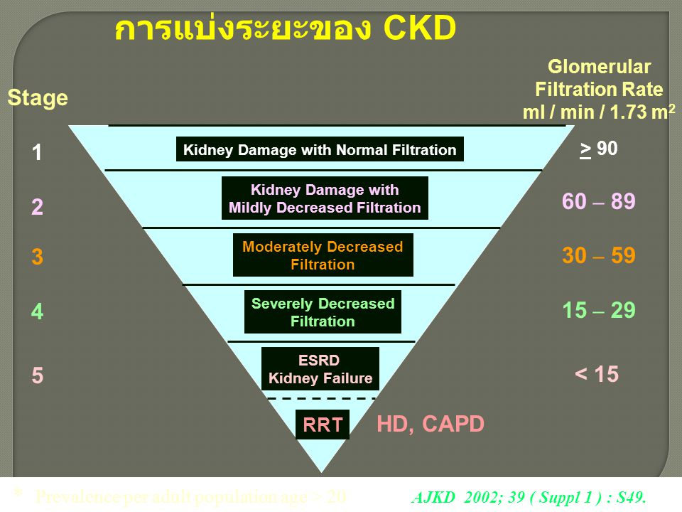 การแบ่งระยะของ CKD Stage 1 2 3 4 5 ESRD Kidney Failure Severely Decreased Filtration Moderately Decreased Filtration Kidney Damage with Mildly Decreas