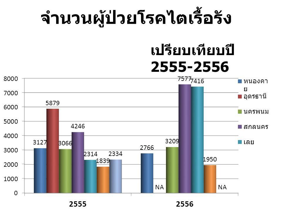จำนวนผู้ป่วยโรคไตเรื้อรัง เปรียบเทียบปี 2555-2556