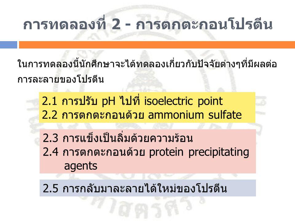 การทดลองที่ 2 - การตกตะกอนโปรตีน ในการทดลองนี้นักศึกษาจะได้ทดลองเกี่ยวกับปัจจัยต่างๆที่มีผลต่อ การละลายของโปรตีน 2.1 การปรับ pH ไปที่ isoelectric poin