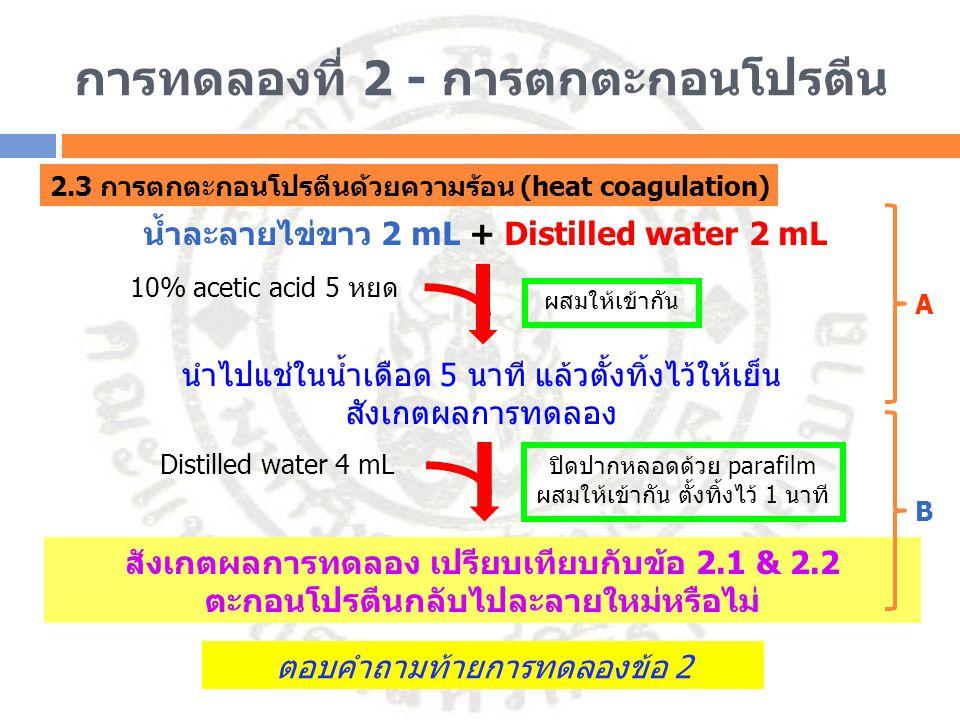 การทดลองที่ 2 - การตกตะกอนโปรตีน 2.3 การตกตะกอนโปรตีนด้วยความร้อน (heat coagulation) น้ำละลายไข่ขาว 2 mL + Distilled water 2 mL ผสมให้เข้ากัน สังเกตผล