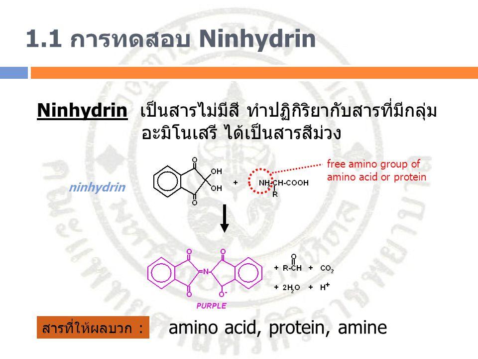 1.1 การทดสอบ Ninhydrin การแปลผล : ผลบวกจะได้สารละลายสีม่วง แต่ถ้าเป็น proline หรือ hydroxyproline (2 o amine) จะได้สารละลายสีเหลือง amino acid Proline Hydroxyproline Negative Positive Positive (proline)