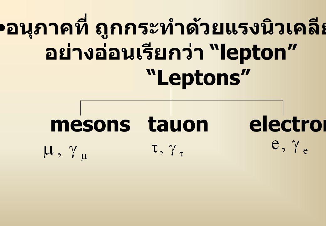 """อนุภาคที่ ถูกกระทำด้วยแรงนิวเคลียร์ อย่างอ่อนเรียกว่า """"lepton"""" """"Leptons"""" mesonselectrontauon"""