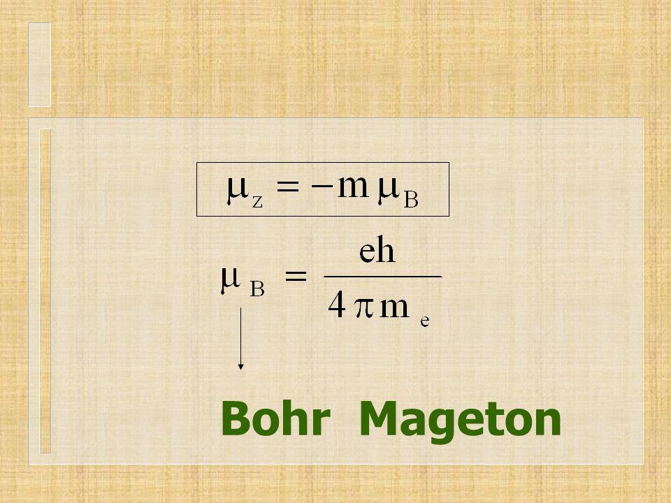 Bohr Mageton