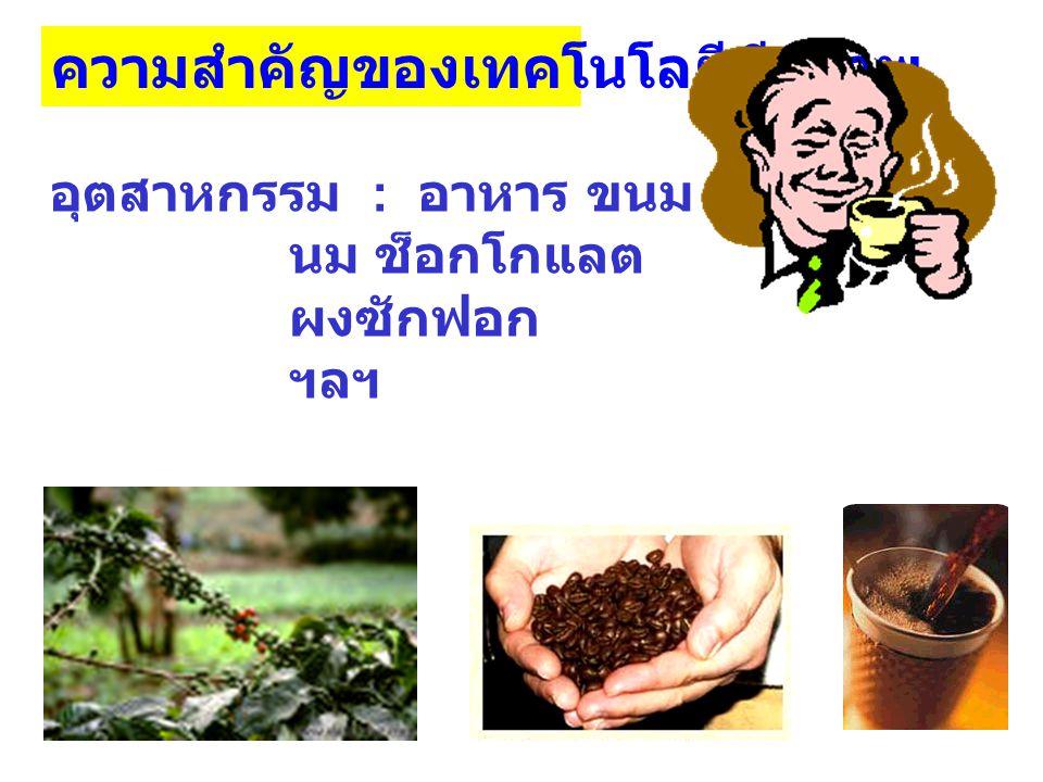 ความสำคัญของเทคโนโลยีชีวภาพ อุตสาหกรรม : อาหาร ขนม นม ช็อกโกแลต ผงซักฟอก ฯลฯ