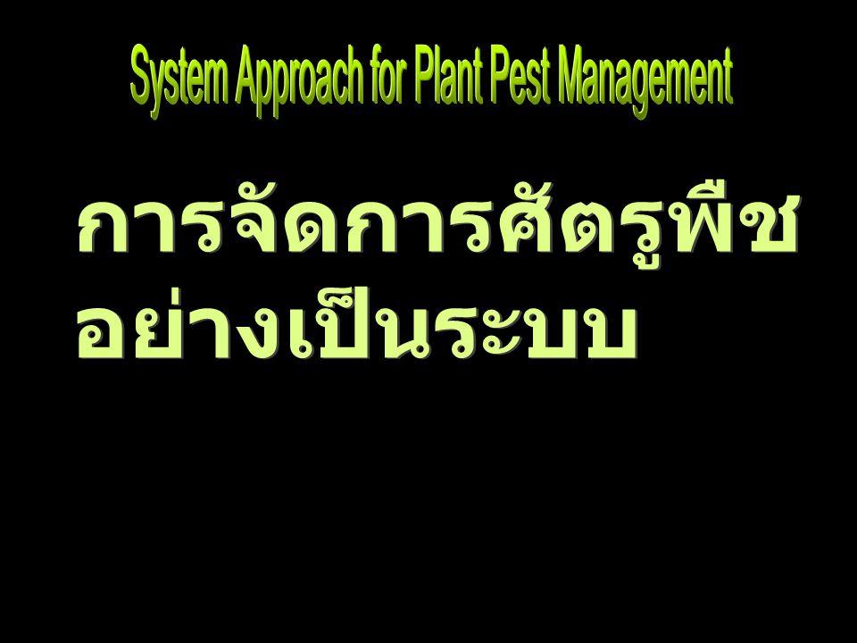 ได้รับการพัฒนา เพื่อเป็น ทางเลือกในการ บริหาร จัดการ ความเสี่ยงที่เกิด จากศัตรูพืช หรือ เพื่อ ลด ความเสี่ยง ศัตรูพืช การจัดการศัตรูพืชอย่างเป็น ระบบ